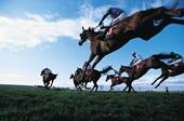 horse-racing-04.jpg